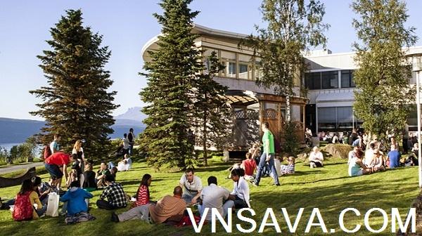 Du học Na Uy - Tư vấn, học bổng, chí phí, visa - Vnsava.com