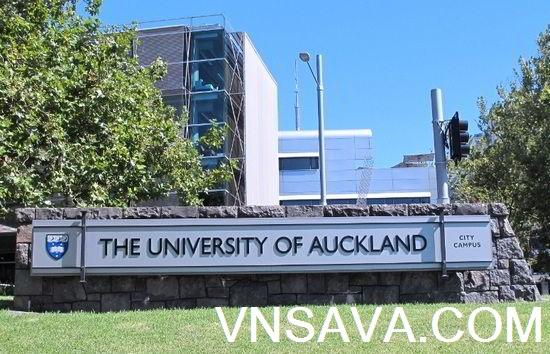Du học New Zealand - Tư vấn, học bổng, chí phí, visa - Vnsava.com