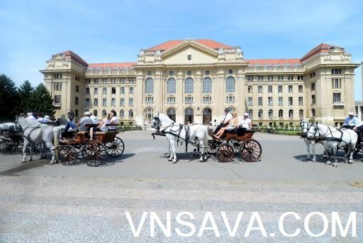Du học Hungary - Tư vấn, học bổng, chí phí, visa - Vnsava.com