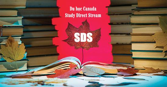 Điều kiện Du Học Canada Theo Diện SDS Năm 2020