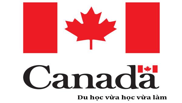 Chương trình vừa học vừa làm Co-op khi du học Canada có nên hay không