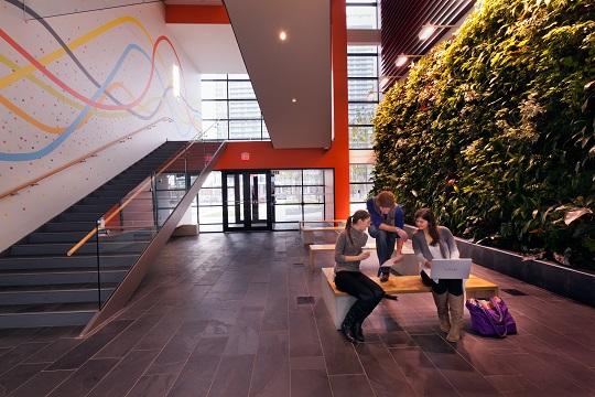 Du học Canada 2020 trường Sheridan College – Visa ưu tiên cùng chương trình thực tập hưởng lương